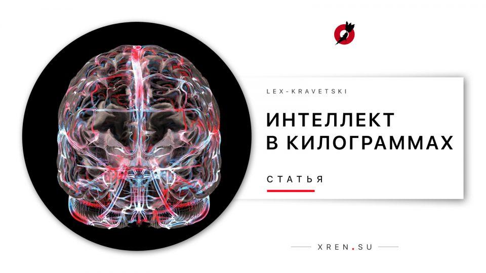 Интеллект в килограммах