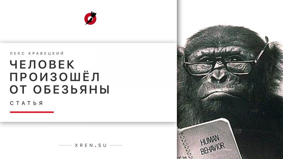 Человек произошёл от обезьяны