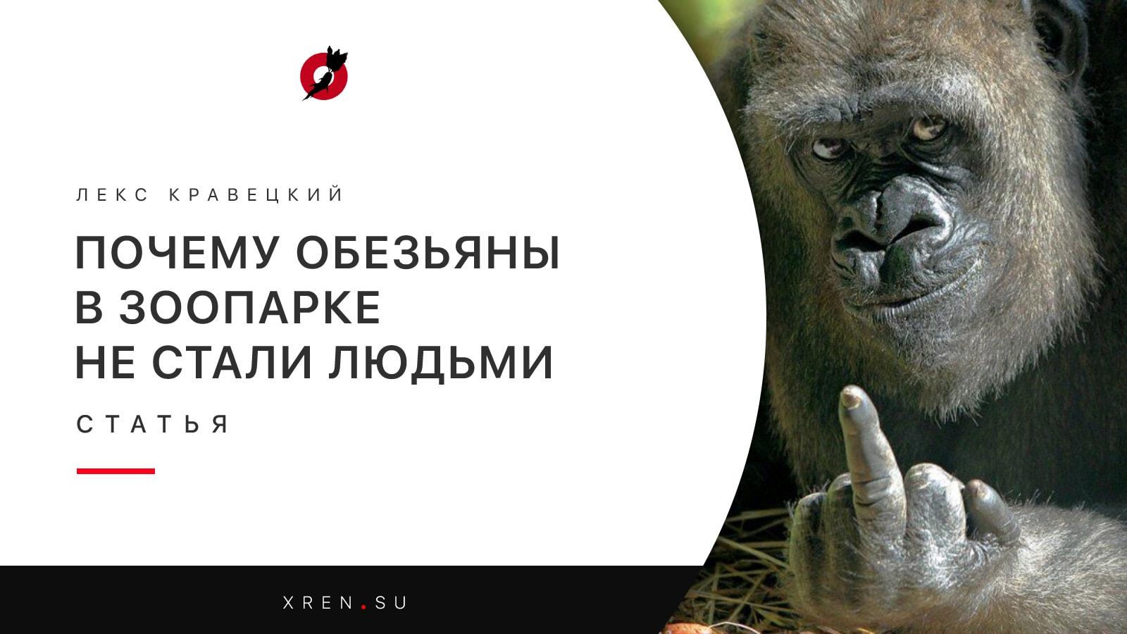 Почему обезьяны в зоопарке не стали людьми