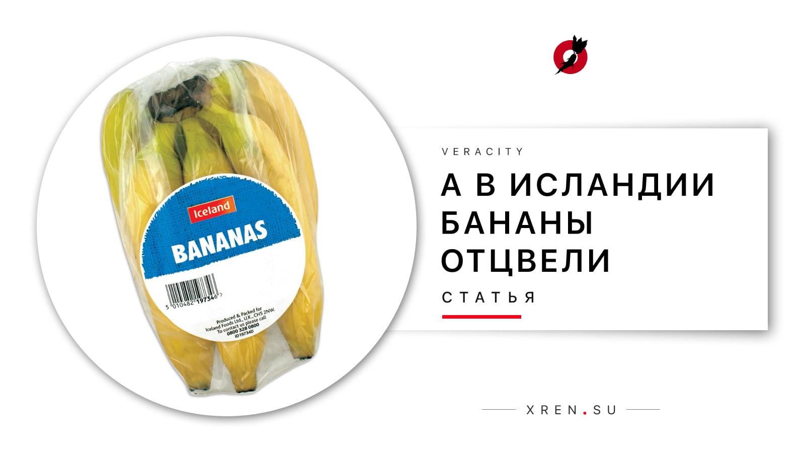 А в Исландии бананы отцвели
