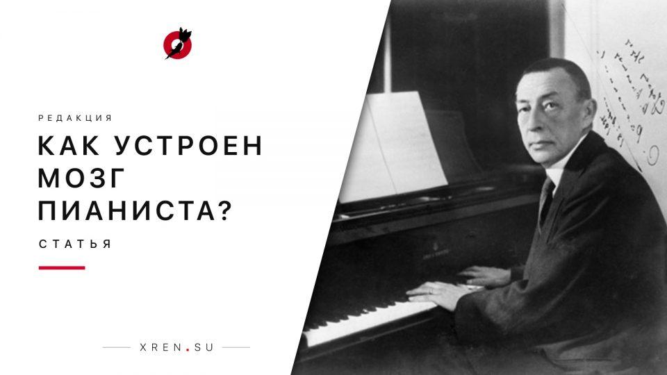 Как устроен мозг пианиста?