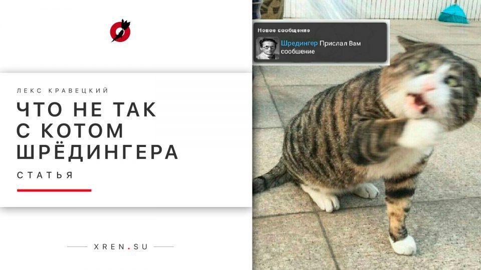 Что не так с котом Шрёдингера