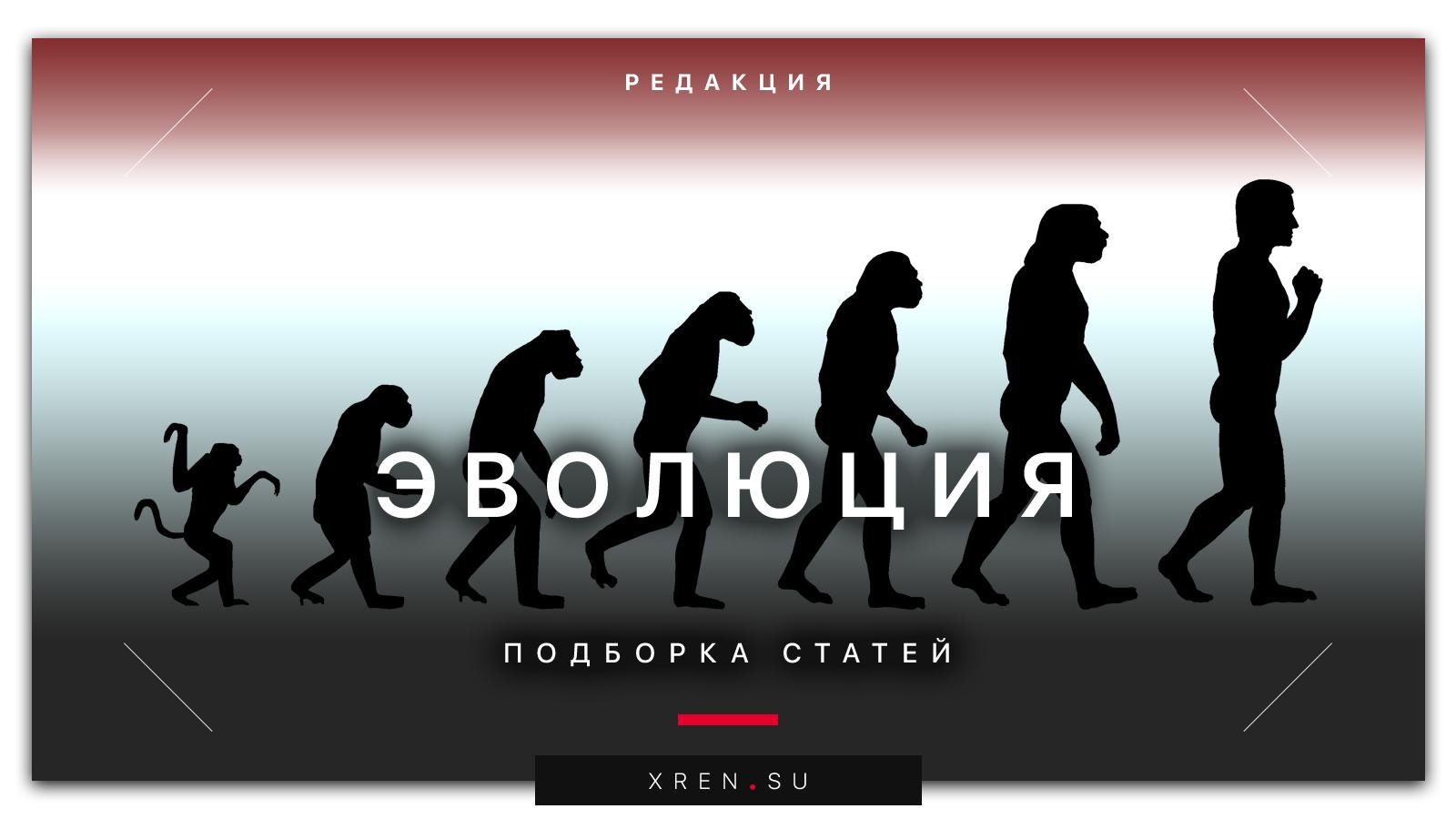 Эволюция: подборка статей