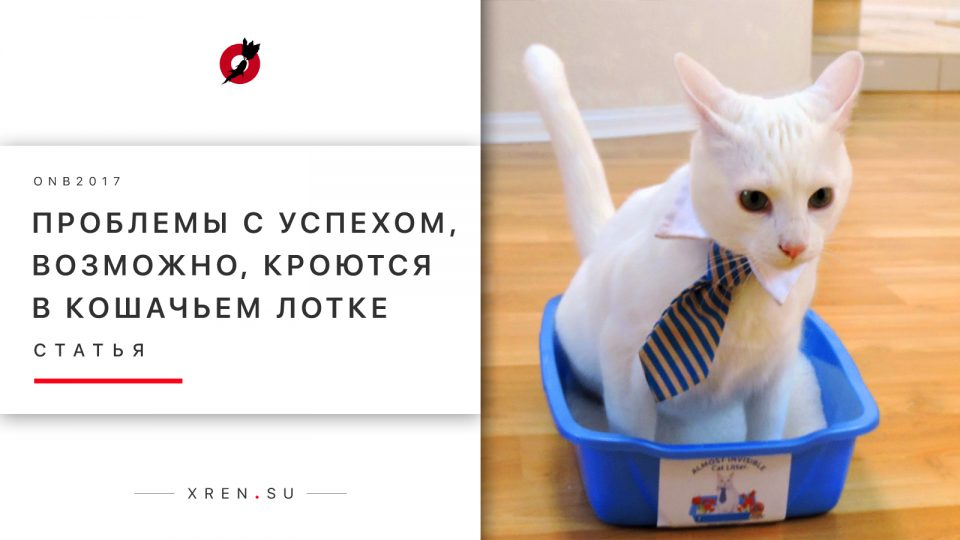 Проблемы с успехом, возможно, кроются в кошачьем лотке