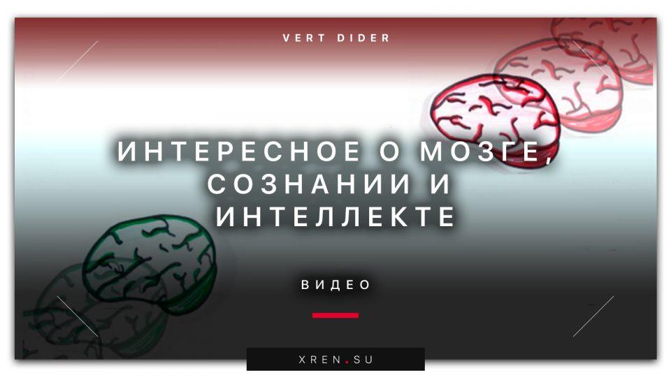 Интересное о мозге, сознании и интеллекте (видео)